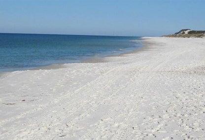 Living In Neptune Beach Fl